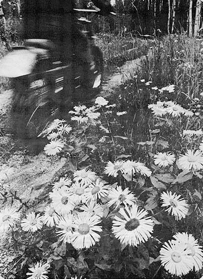 Sprucewood:  Motorcycle Paradise